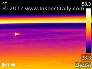 Thermal Image of dolphin on surface of Gulf of Mexico