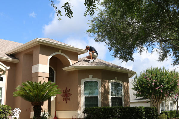 Home inspection services