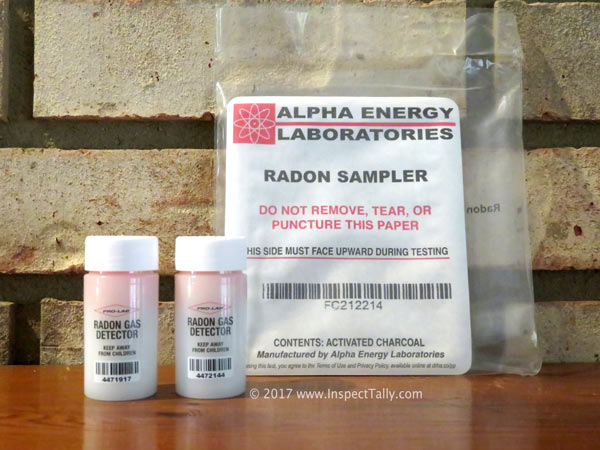Tallahassee Home Inspection Passive Radon Testing Devices