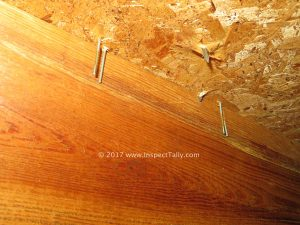 Tallahassee Home Inspector Wind Mitigation Inspection