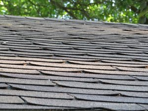Tallahassee home inspector identifies curling roof shingles during the roof inspection