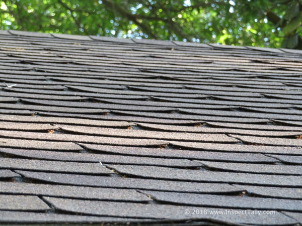 Curled Shingles Roof Defect 2 Tallahassee Real Estate