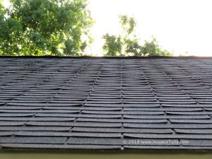 Home Inspector identifies curling roof shingles at a Tallahassee home.