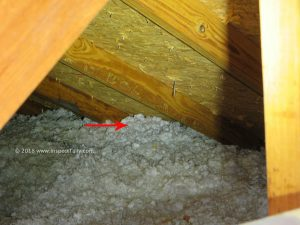 Improperly insulated attic is identified as a leading cause of premature roof shingle curling by a Tallahassee Home Inspector.